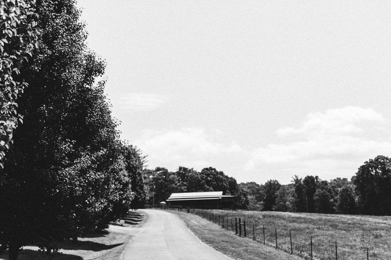 Aska-Farms-Blue-Ridge-Wedding-Michelle-Scott-Photography-3